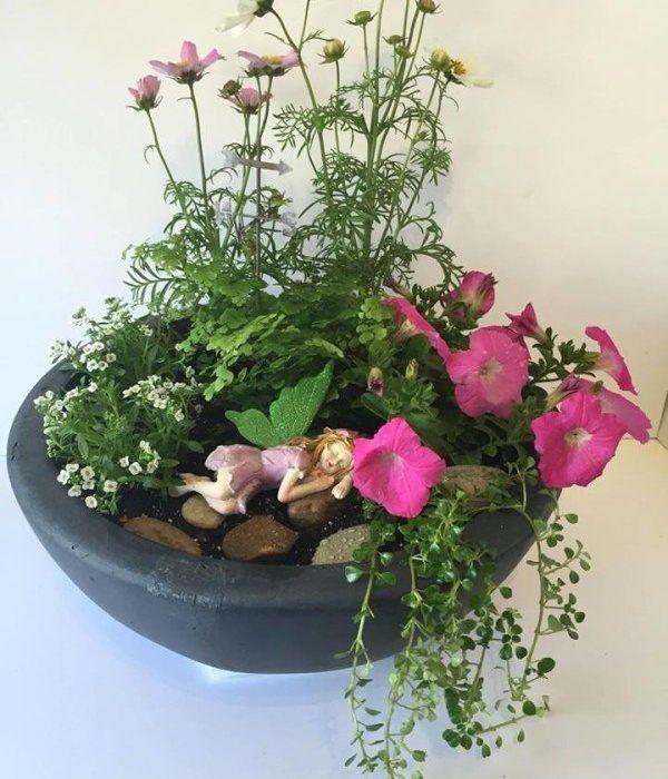 Fairy Godmother Friday – Fairy Garden Workshop!