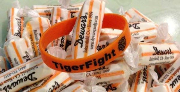 Tiger Fight Fairy Godmother Sponsor