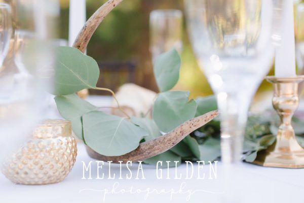 JEH Melisa Gilden Fairy Godmother Wedding