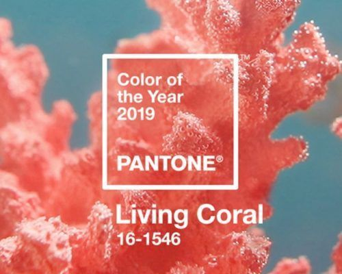 Pantone Announces 2019 Color of the Year